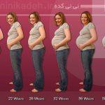 محاسبه سن بارداری/ سن حاملگی را چگونه حساب کنیم؟