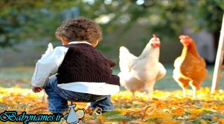 راهکاری جهت تعامل کودک با طبیعت
