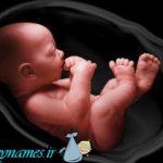 احتمال انتقال صرع، از مادر به جنین