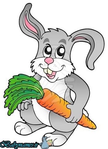 قصه ی «خرگوش مهربان و سوپ هویج»