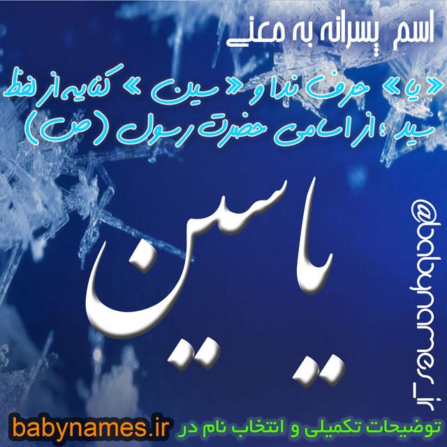 تصویر و معنی اسم یاسین